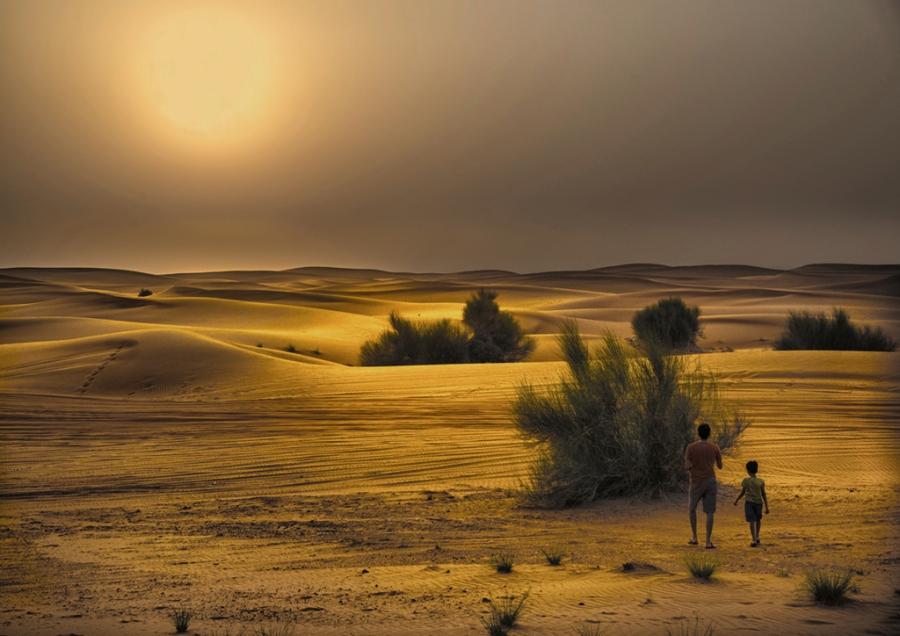 atardecer en desierto