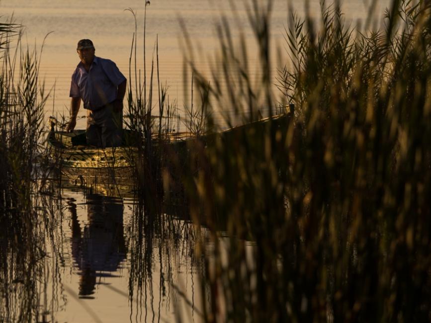 pescador en la albufera