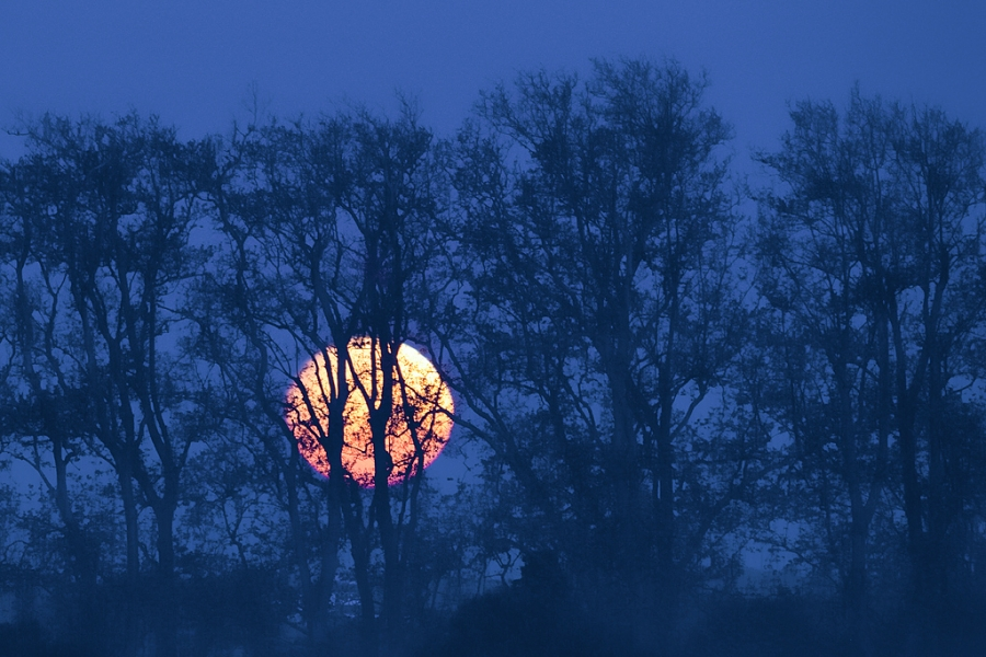 Al escondite con la luna