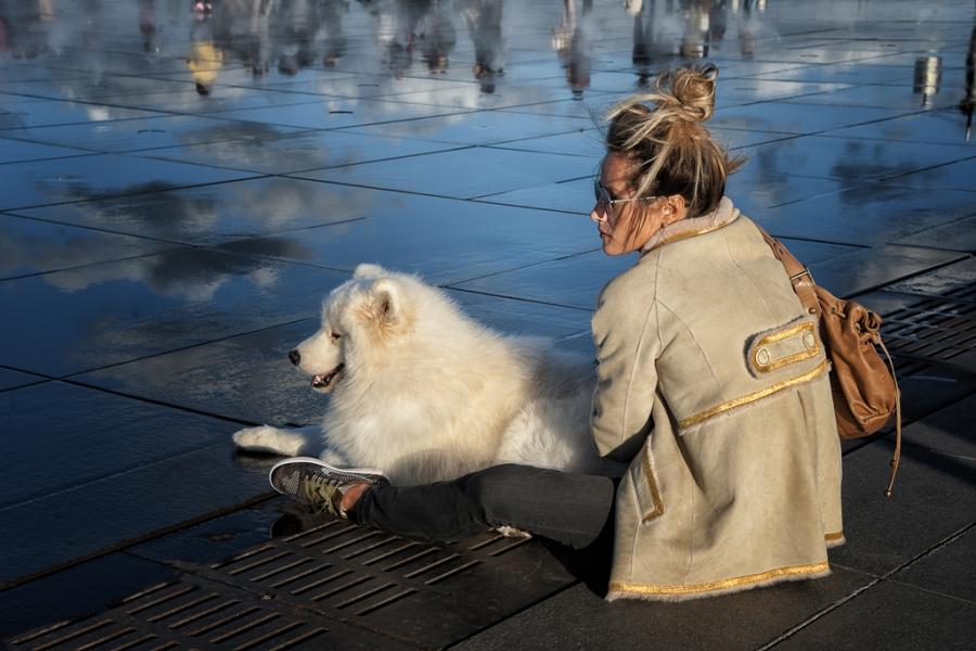 La chica y el perro