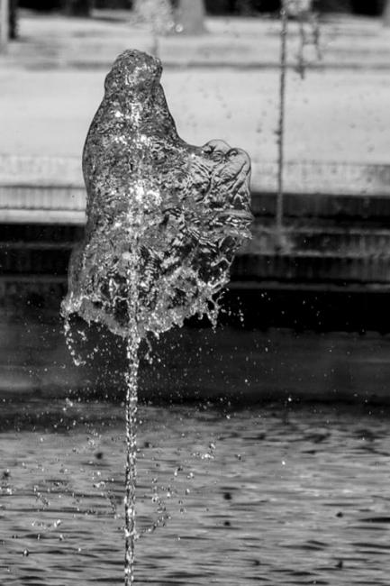 El fantasma del agua
