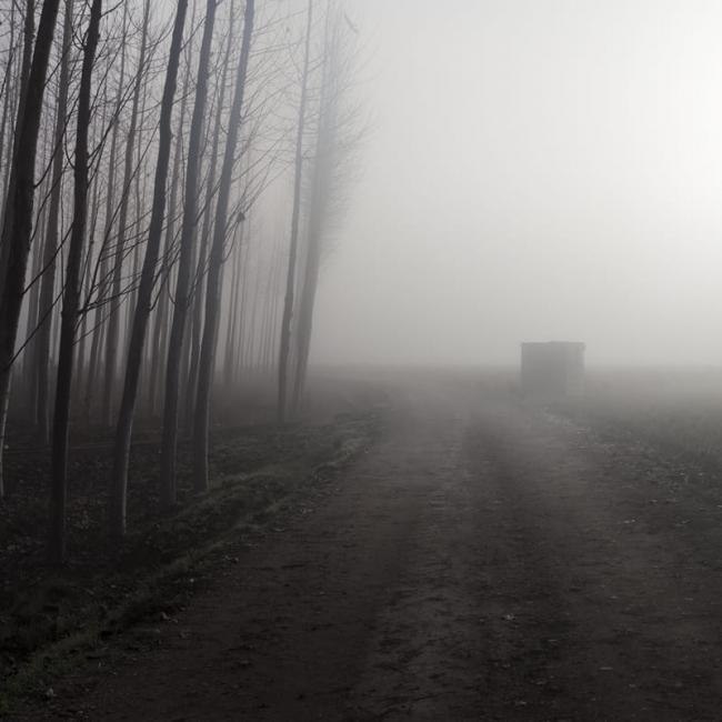 Nieblas de diciembre