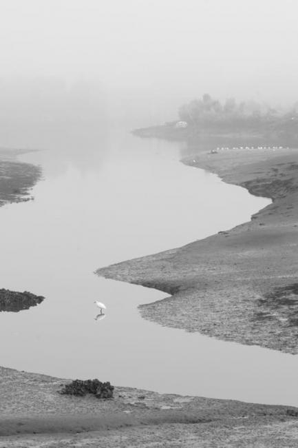 Niebla en el Bidasoa