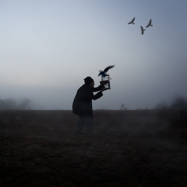 L'Ocell 3