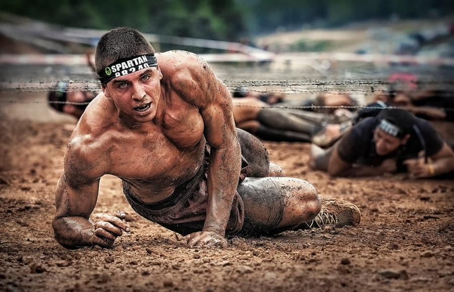 Spartan 88240