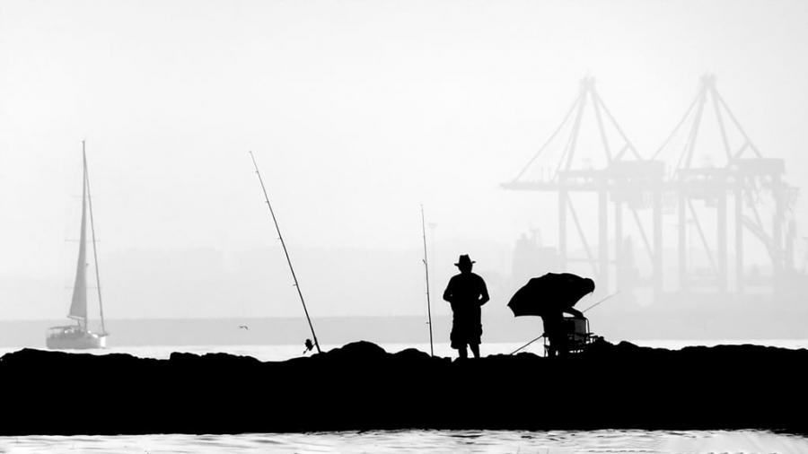 El viejo y el mar.