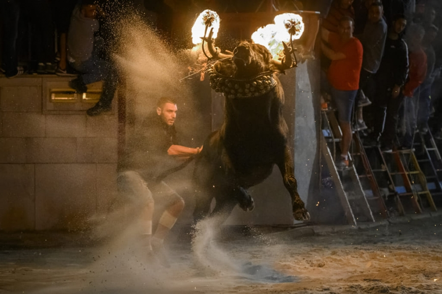 Fire bull