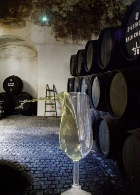 Escapada del vino nuevo