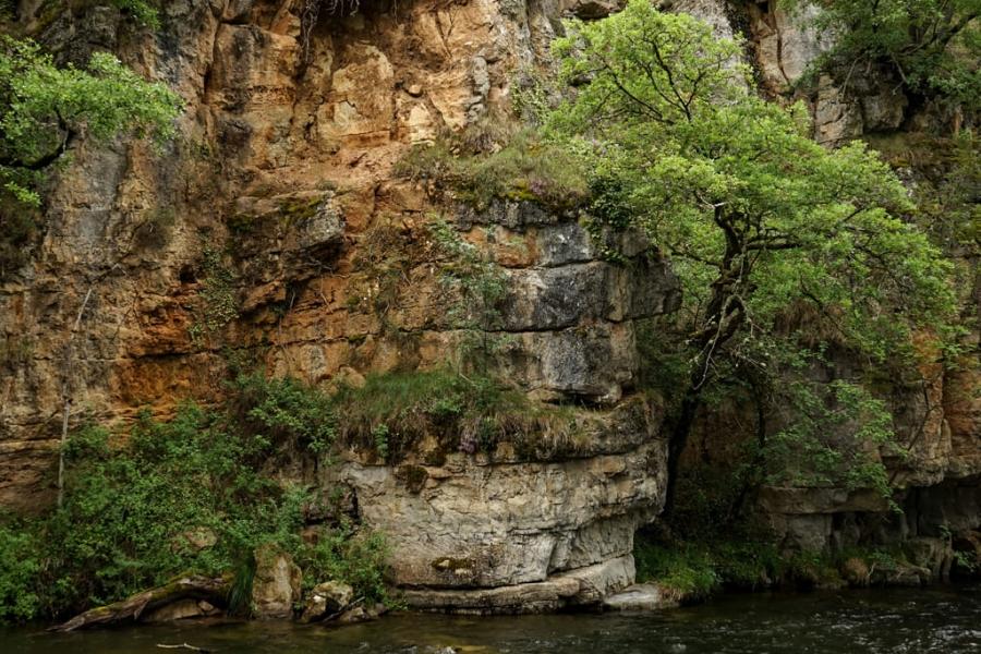 Rio Torrecilla
