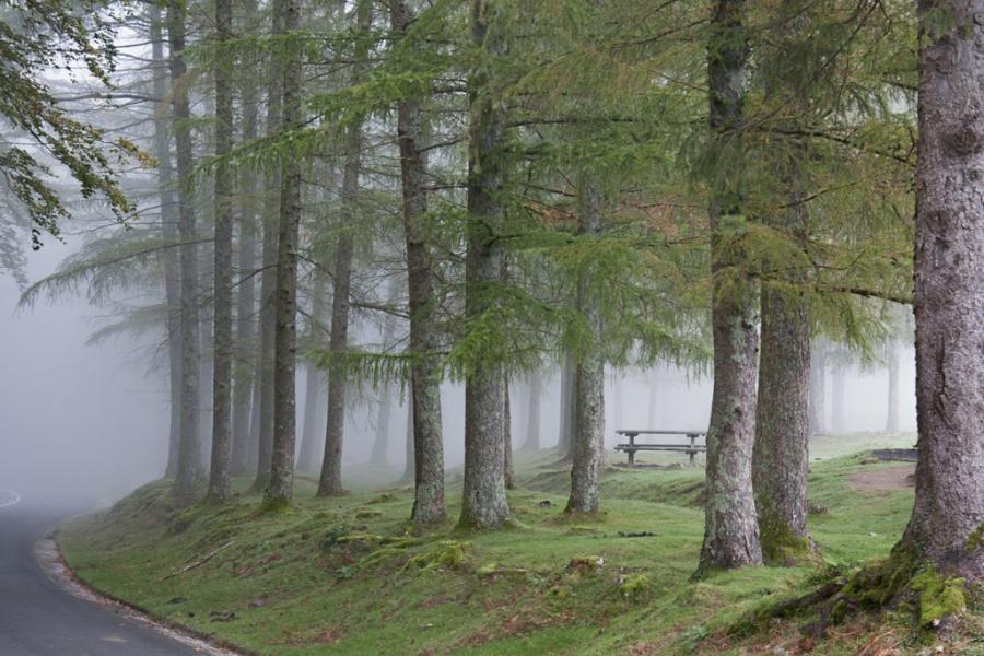 Niebla en Erlaitz