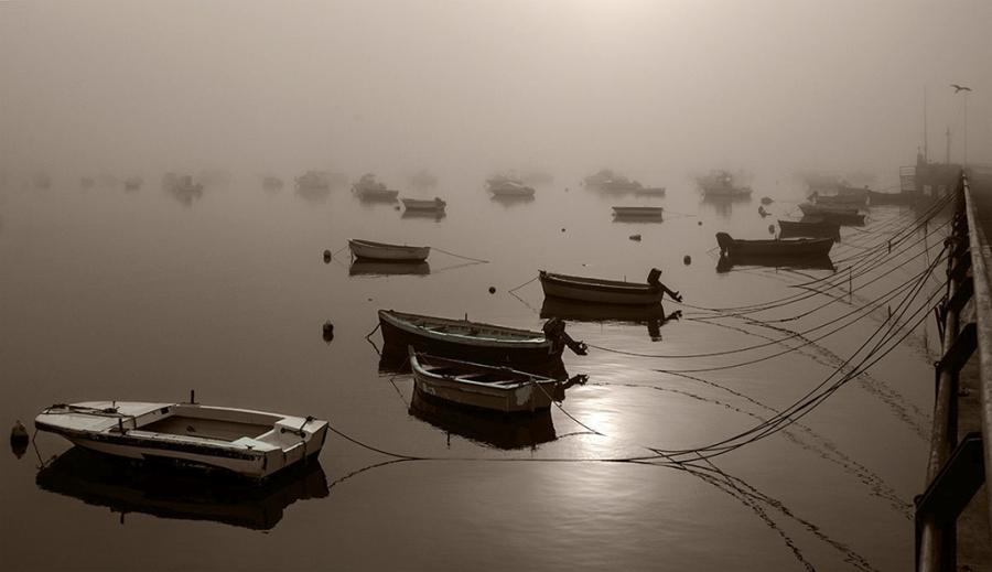 Niebla en el Muelle