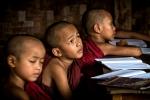 Monjes estudiando