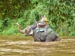 Travessant el riu