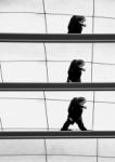 caminante en la rampa