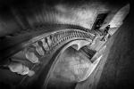 Desde lo alto de la escalera