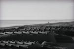 cococdrilos en la arena