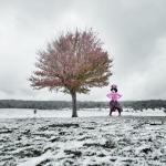 La dama de las nieves