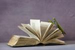 Mantis Read