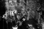 Aulas de bambú