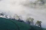Con niebla buen día